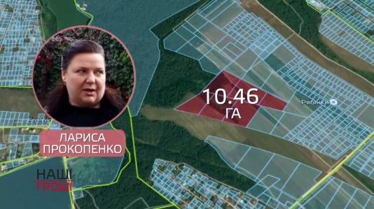 Сестра «бриллиантового» прокурора «по-партнёрски» завладела 10 гектарами под Киевом