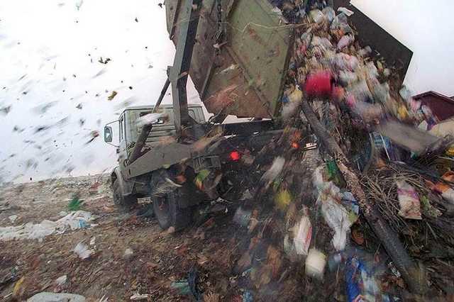 В тонущем в мусоре Подмосковье отменяют субботники: возить отходы все равно уже некуда
