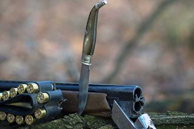Депутат Госдумы предложил разрешить охоту на краснокнижных животных
