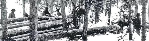 Заключенные на лесоразработках в Карелии, окрестности Медвежьегорска, 1932–1933 годы